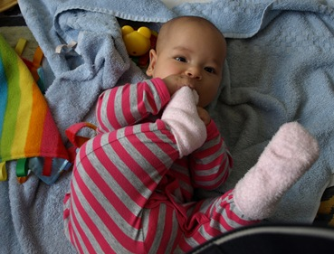 Feb_Baby_20110206_12_01