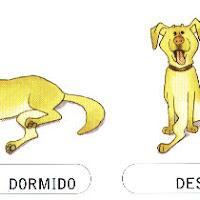 DORMIDO-DESPIERTO.jpg