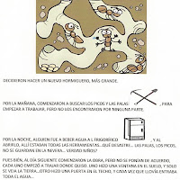 CUENTO_CONSTITCN HORMIGAS 01.jpg