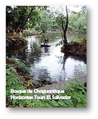 Bosque de Chaguantique