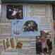 View Gabriel's Scrap-books