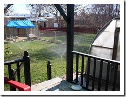 Yard May 4 2011 (1) (Medium)