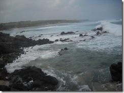 Maui_DB_Day320069
