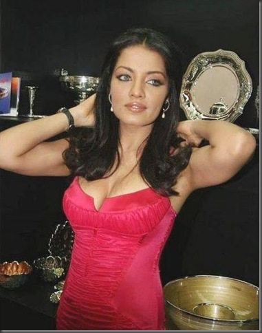 1Celina Jaitley  hot pictures250510