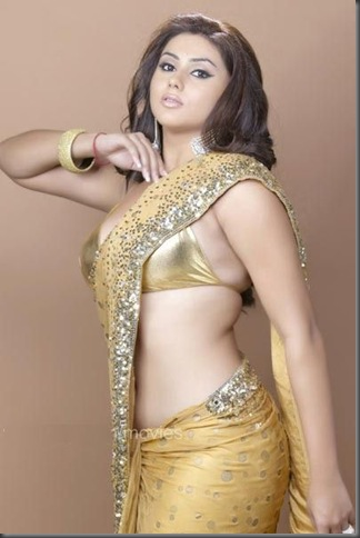 namitha in half saree