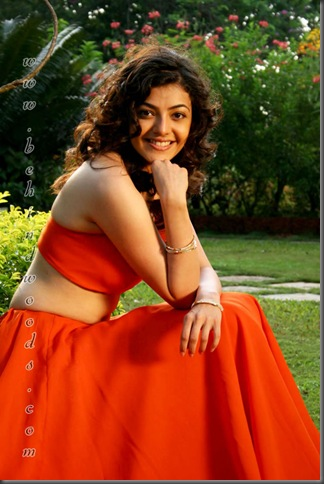 2Kajal Agarwal hot tollywood actress pictures310510