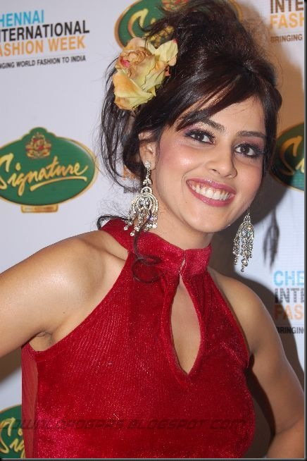 Genelia Latest Cute Stills_01
