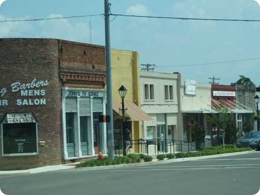 Memphis to Savannah, TN 028