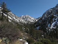 Cucamonga Wilderness
