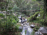 Bridge at Winter Creek Photo