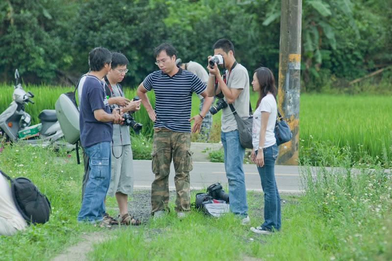20100626鐵支路旁拍荷and大坑波斯菊(istd vs 底片)