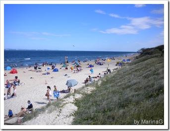 Gold Coast (2)