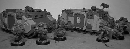 FW Rhinos 1 (800x306)