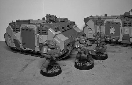 FW Rhinos 3 (800x518)
