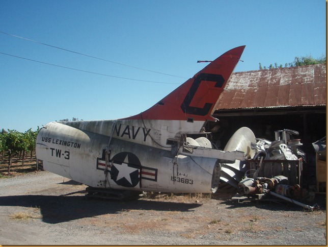 Airplane junkyard with grapevines