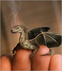 dragon-baby
