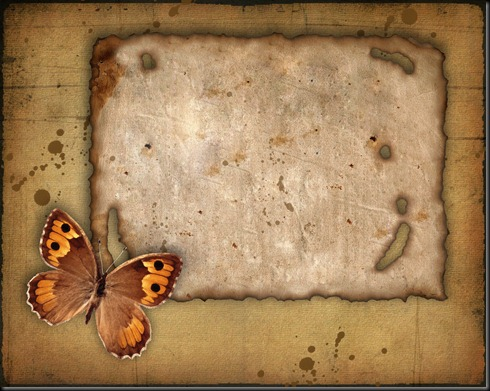 Old paper and the butterfly