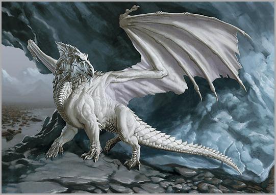 White-Dragon-dragons-5297591-640-440