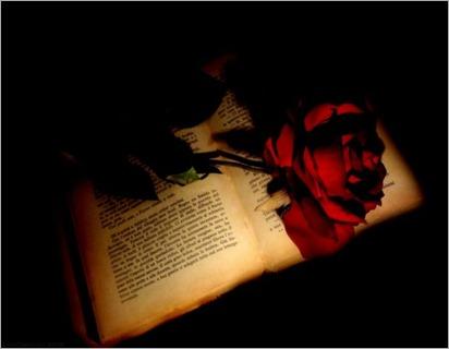 rosa-y-libro (1)