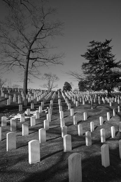 Arlington in March-4