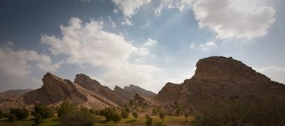 Al Aain Oasis