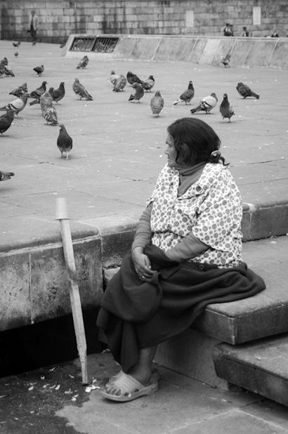 Bird Lady Bogota