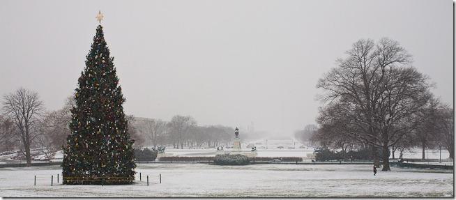 US Capitol at Christmas