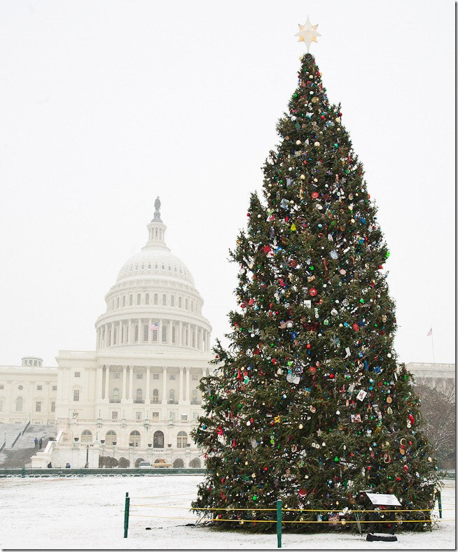 US Capitol at Christmas-2