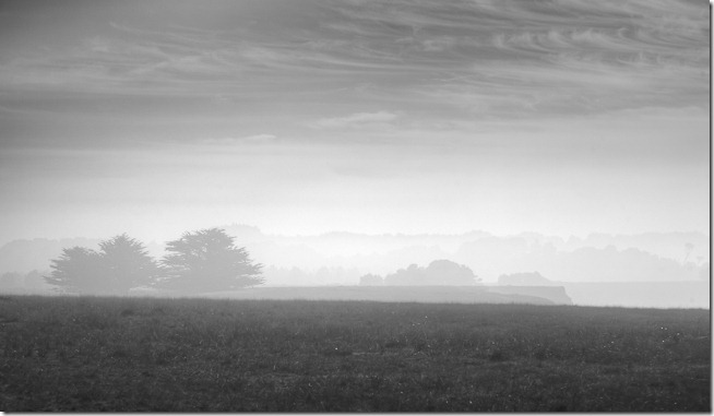 Foggy Field at Point Arenas
