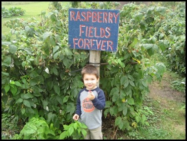 Raspberry Fields Forever
