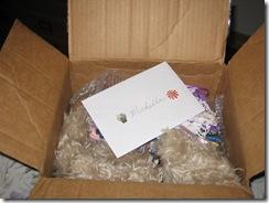Julie's gift 003