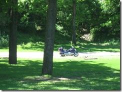 picnic 005