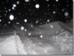 blizzard 023