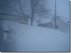 shoveled 008