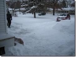 shoveled 012