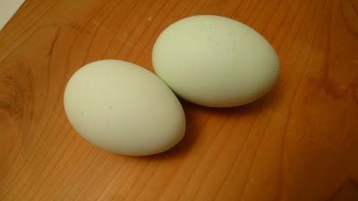 Emerald egg - エメラルド卵