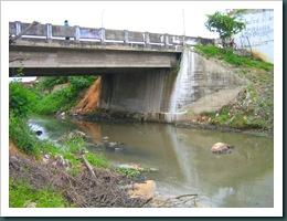 Ponte Nova 005