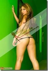 สาว เซ็กซี่ ดาราไทย ภาพ หวิว ดารา ไทย ภาพหลุดดาราไทย ภาพหลุดทางบ้าน (53)