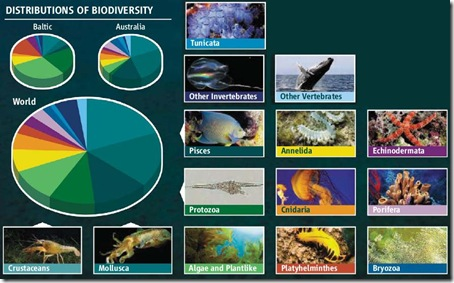 distribution biodiversity