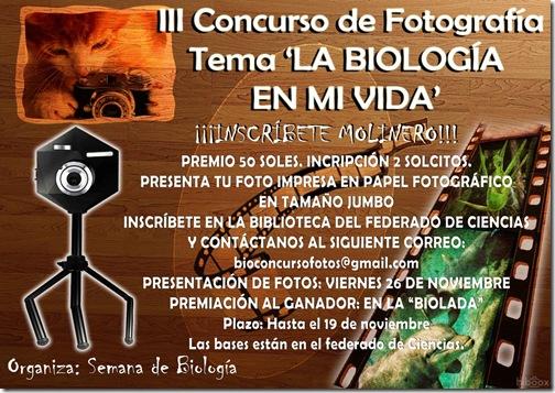 concurso_fotos