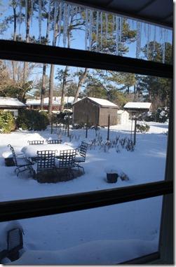 Christmas 2010 291