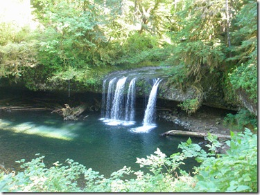 butte creek falls 004