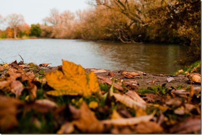 Autumn-1-10