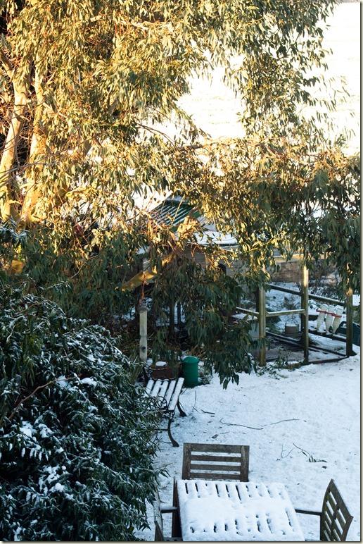 winter-1-4
