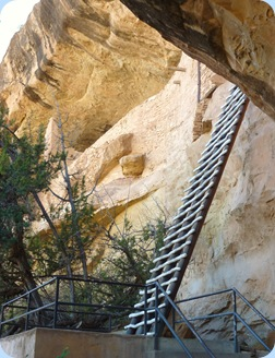 Mesa Verde Balcony House 32 ft. Ladder