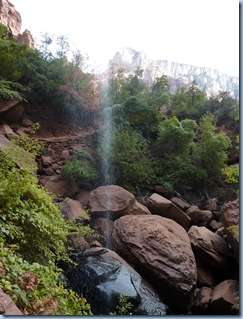 Zion Nat'l Park Upper Emerald Pool 1