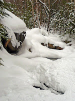 Mt Giant, Roaring Brook 3639.JPG Photo