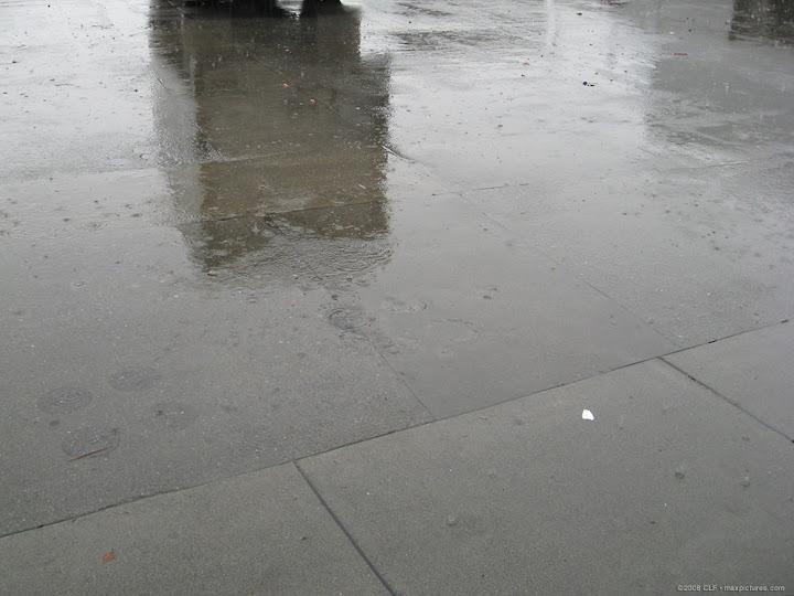 Farmers Market vs. Pouring Rain