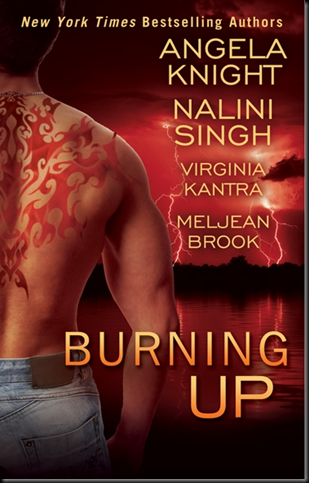 Cover Art: Burning up by Angela Knight, Nalini Singh, Virgina Kantra, and Meljean Book