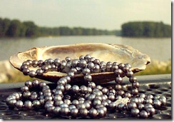 black-pearls-tumbling-from-shell-by-mississippi